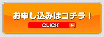 button_20111229172859.jpg