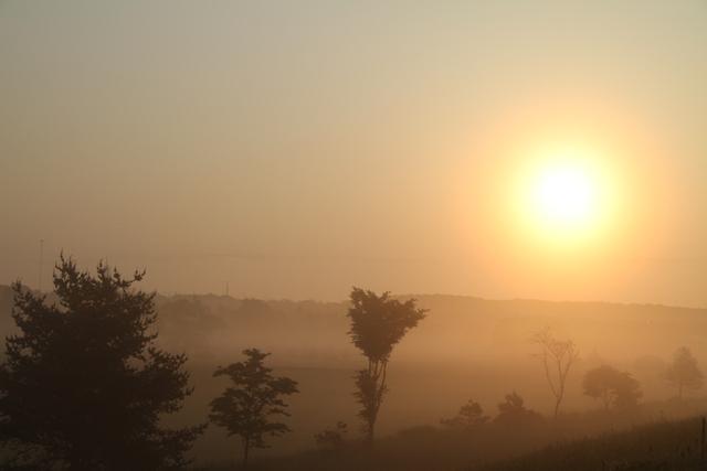 019太陽の輪