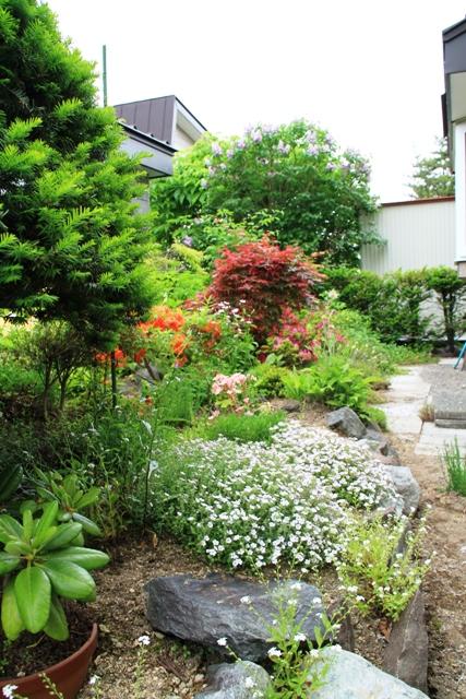 003狭い庭