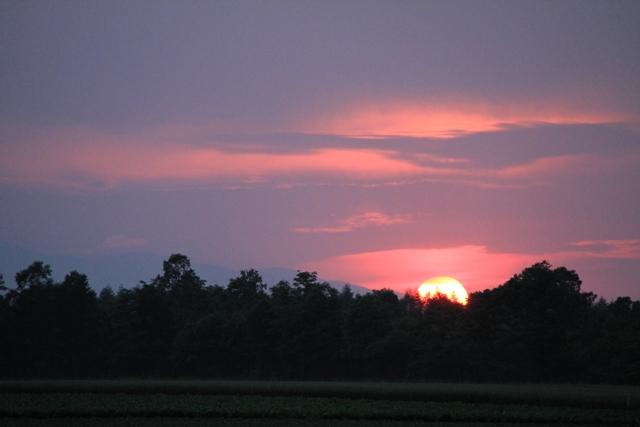 071太陽半分
