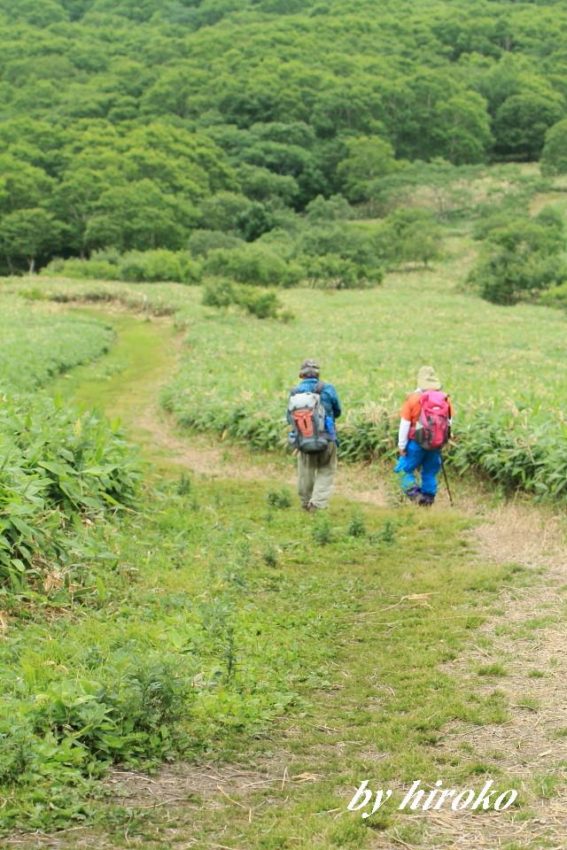 430歩きやすい登山道
