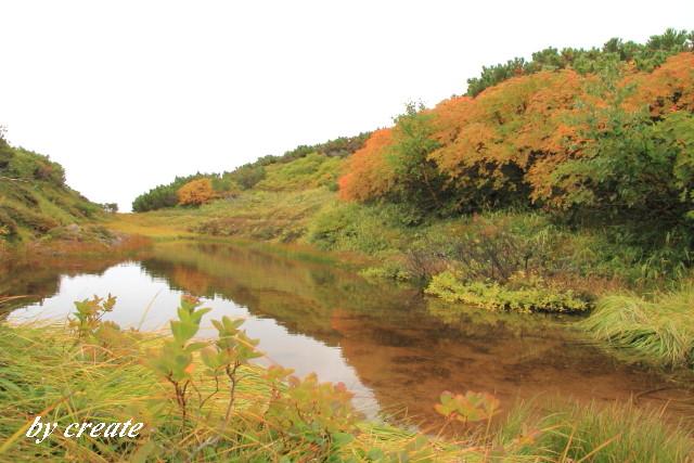 327水面に映る秋の気配