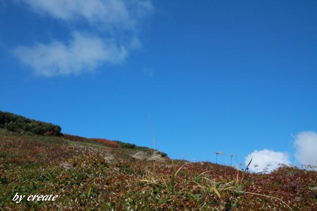 204北海岳へ向かう途中で見たチングルマの秋模様