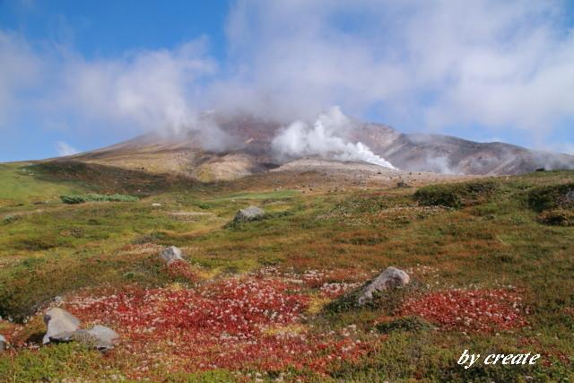 292雲の覆われた旭岳と紅葉したチングルマ