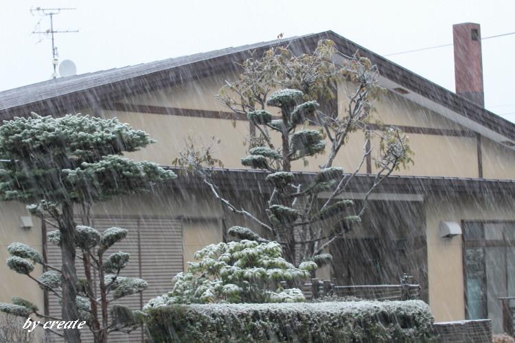 107霙のような雪