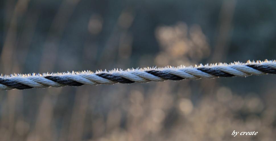 050ロープに咲いた小さな霜の花