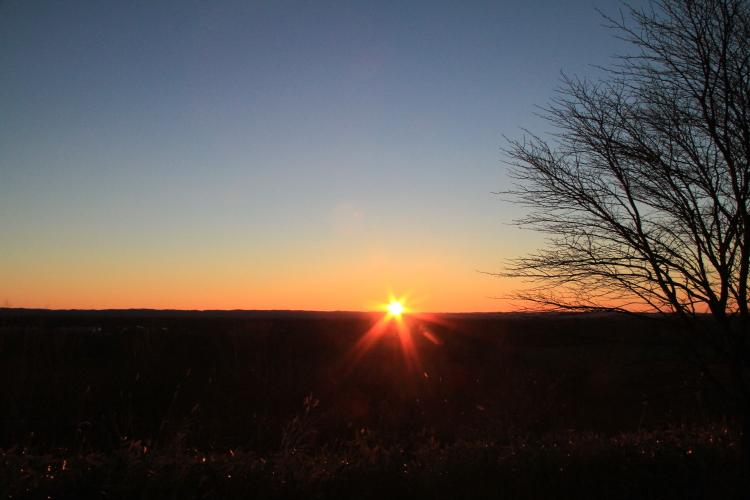 DPP 034 日の出と輝く草原0001