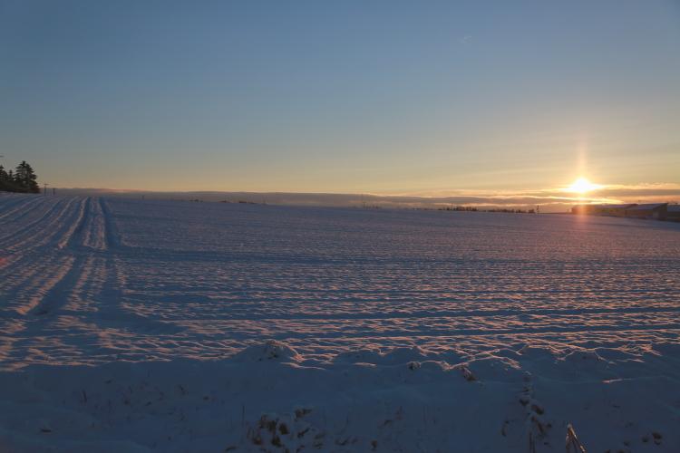 DPP 114 雪原とサンピラー0001