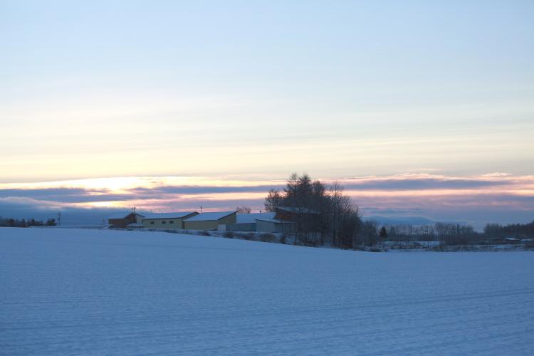 DPP 085 音更郊外の雪景色0001