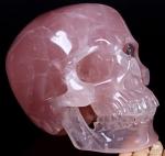 skull42.jpg