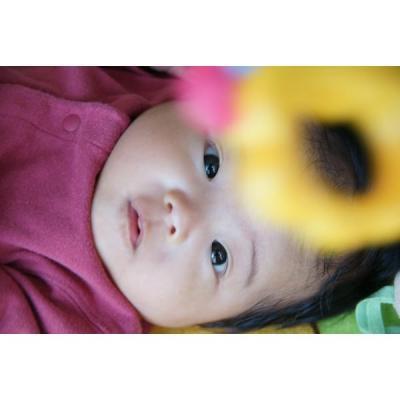 DSC00468_small_convert_20111001220700.jpg