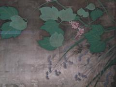 夏秋草図5