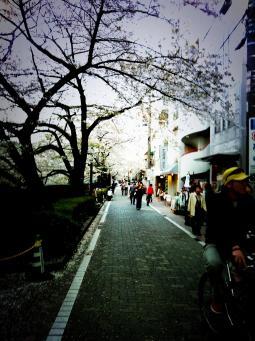 譚ア莠ャ_convert_20110414155132
