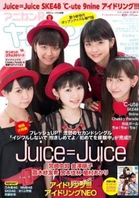 アニカンRヤンヤン Vol.11
