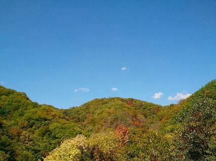 2014.紅葉と散歩2