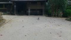 t2pix_20111103-123505.png