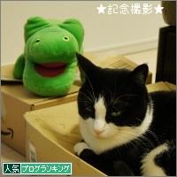 dai20141111_banner.jpg