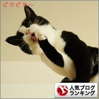 dai20141114_banner.jpg