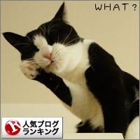 dai20141121_banner.jpg