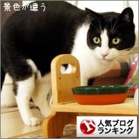 dai20141125_banner.jpg