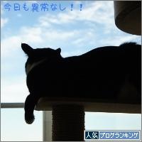dai20141202_banner.jpg