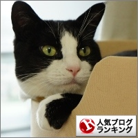 dai20141203_banner.jpg