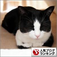 dai20141204_banner.jpg