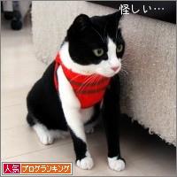dai20141208_banner.jpg