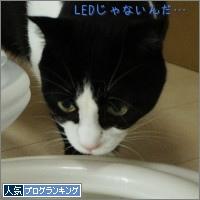 dai20141210_banner.jpg