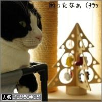 dai20141211_banner.jpg
