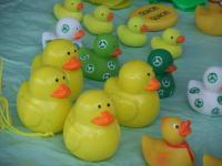 2012_0401fuji0012_convert_20120404054742.jpg