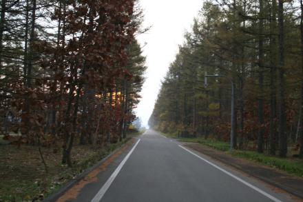 20111105-10.jpg