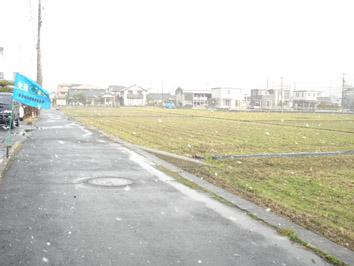DSC07961雪