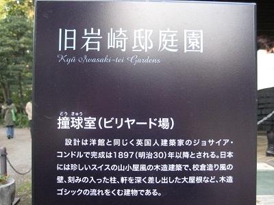 1123IWASAKI10.jpg