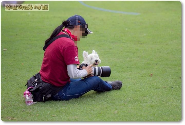 daizukandaizukan-photo-5600.jpg