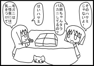kani4.jpg