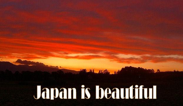 japanisbeauty2.jpg