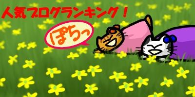 黄色のお花20141112