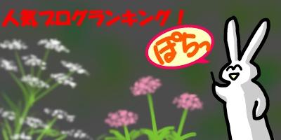 セリとオミナエシ20141124