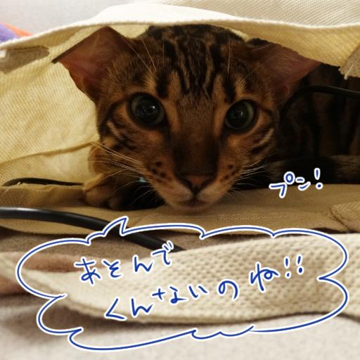 20141022_05.jpg