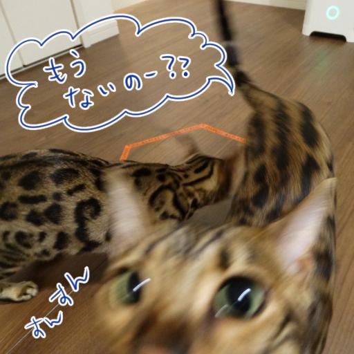 20141102_10.jpg