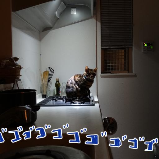 20141124_01.jpg
