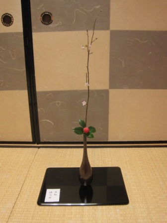 叔母 豆桜