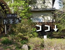 20110514-038.jpg