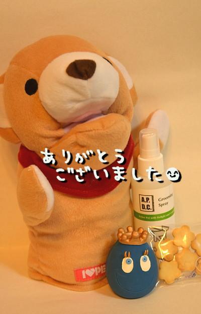 DSC_8325.jpg