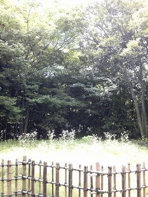 20110630_17.jpg