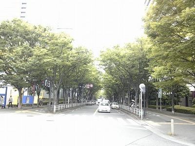 20110630_33.jpg