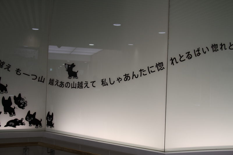 IMG_7872_r.jpg