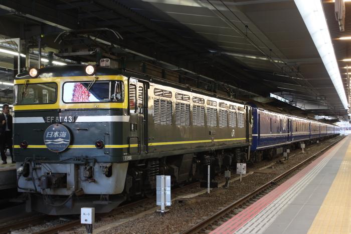 EF81-43