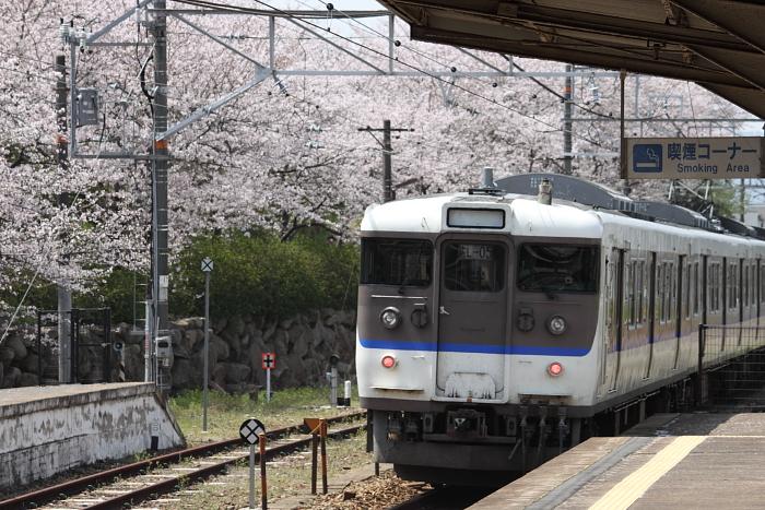 金光駅の桜と115系